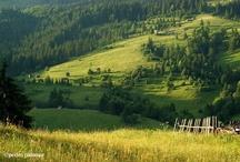 România te iubesc...
