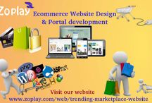 Ecommerce Website Design and Portal Development