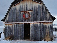 Down on the Farm / by T Siegner