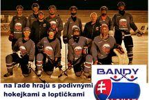 Slovak association Bandy /  Lukáš Vepy založil dňa 12. Mája 2017 Slovenskú Asociáciu Bandy SAB aj prvý klub Bandy NASE o.z.