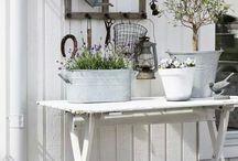 tuin ideeën / Onze tuin en tuinideetjes