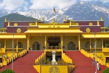 Dharamshala Tour Packages / The high Dhauladhar Range tour.....