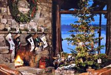 Fireplace, TV, bookcase