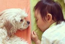 Animais e Crianças!