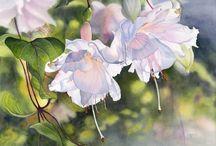 ART:  MARNEY WARD'S WATERCOLOR FLOWERD