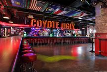 sycamore bar