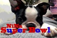 NiNa Super Bowl!