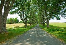 Long Driveways