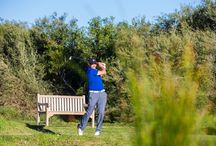 2015 ACA Legends Golf Day / 2015 ACA Legends Golf Day