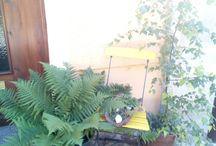 virágok-zöldek mindenhol / Virágot bárhova lehet ültetni.