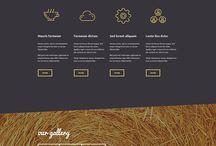 Web sitesi şablonu