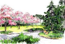 Disegni giardini e paesaggio