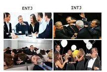 Typology. MBTI. Enneagram. Astrology