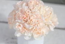 Perfect peach wedding