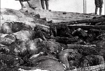 Historie 2. verdenskrig