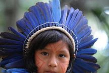 Amazônia congresso
