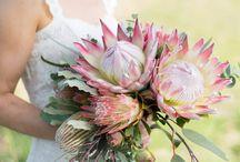 Protea Wedding Inspiration