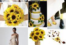 slunečnicova svatba