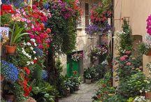 Çiçekli sokak