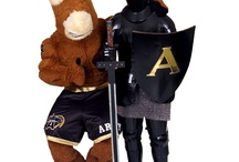 Black Knight Mascots / by Army West Point