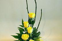 цвеиы