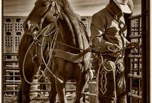 rodeos / by Shyanne Medley-Stillwell