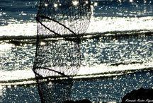 IL MARE D'INVERNO / Il Mare d'inverno. E quando mi chiedete se è triste Jesolo d'inverno.... guardate la poesia del mare d'inverno, fotografato da grandi fotografi e da nostri clienti e da amici