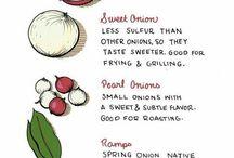 Onion Lover