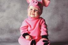Piggy Wanna Be!