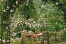 Gardens ♥