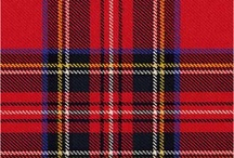 EVERYTHİNG TARTAN