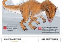 Dinosaur Info Cards