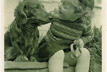 Fotokaarten teckel vintage