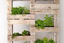 palette planters