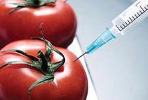 Real Food & Health 411