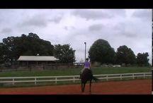 2 horses 2 level Group lesson