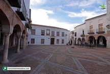 Tierra de Barros y Zafra / Ruta del Vino Ribera del Guadiana, Almendralejo, la capital de Tierra de Barros, la histórica Zafra...