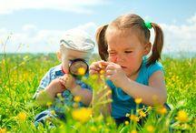 SPERLI´s BIO-Welt / Bio ist Trend – und das völlig zu Recht! Denn Nachhaltigkeit geht uns alle an. Mit unserem ökologisch wertvollen Saatgut kannst nun auch du deinen Beitrag zur Schonung der Umwelt leisten. Unsere geschmackvollen Sorten unterliegen ständigen Kontrollen, sind ressourcenschonend und robust. Genieße eine ertragreiche Ernte aus eigenem Bio-Anbau – zeig dein grünes Herz!