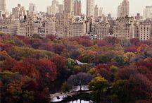 New York / The Big Apple