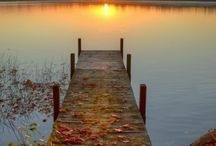 I love the fall! / by Sharyl Rodgers