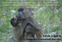 Babies of Africa