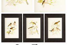 Printables / by Debra Daujatas