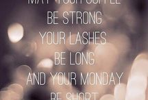 Lash Quotes & Sayings! / Cute collection of lash quotes, sayings, jokes, & more!