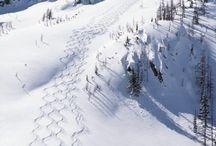 Ski foarn
