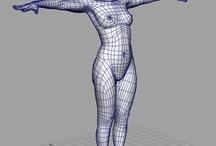 3D Body