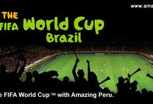 Brazil World Cup 2014 / Join us at the Brazil World Cup 2014. Combine the most important matches whist visiting the highlights of Brazil. Limited Availability.