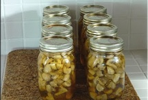 Food - Canning / Preserving foods by canning and recipes  / by Heather Vande Walle