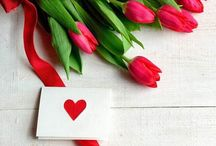 Heart/Love Photo Stock