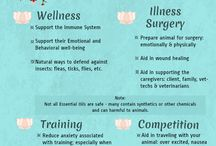 Young Living #1714308 EOs for animals
