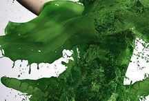 Belleza Verde
